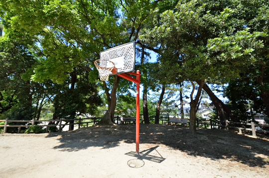 板倉公園 (3)