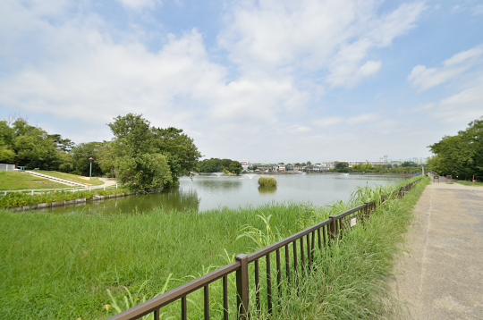 三崎水辺公園 (4)