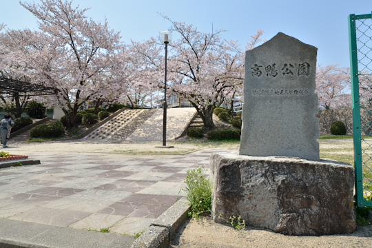高鴨公園 (3)