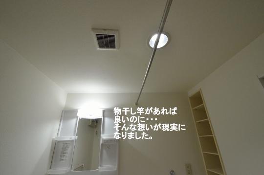 _DSC0043_00022のコピー