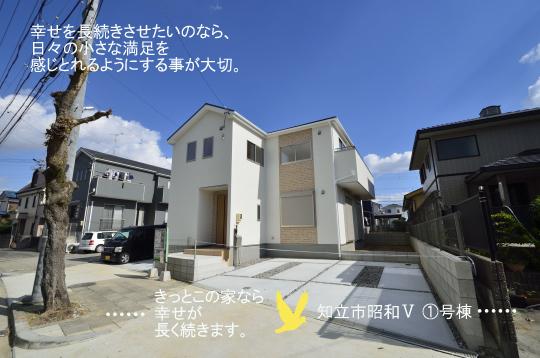 _DSC0145_00073のコピー