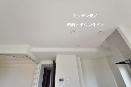 _DSC0207_00194