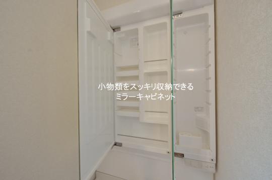 DSC_0159_00015のコピー