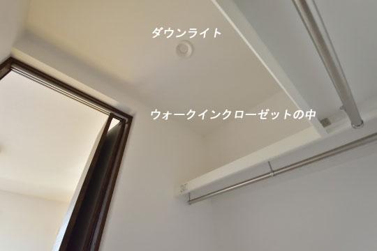 _DSC0141_00124