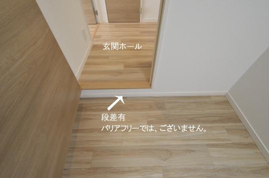 _DSC0021_00011のコピー