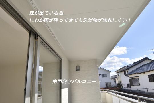 _DSC0139_00129