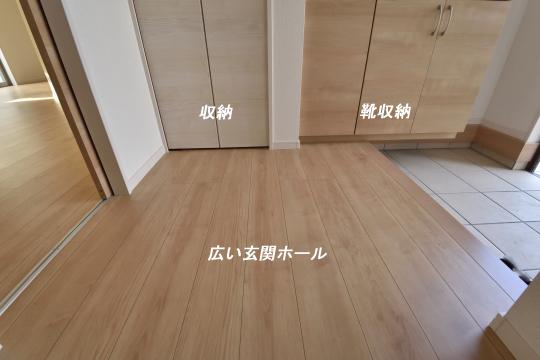 _DSC0193_00183