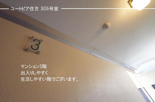 _DSC0005_00003のコピー