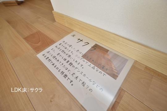_DSC0097_00093のコピー