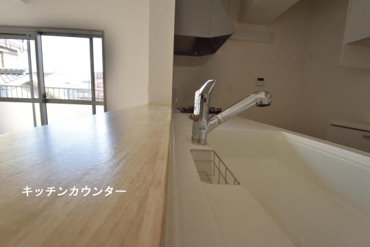 ユーハウス第二刈谷2B号室のキッチンカウンターのアップです。