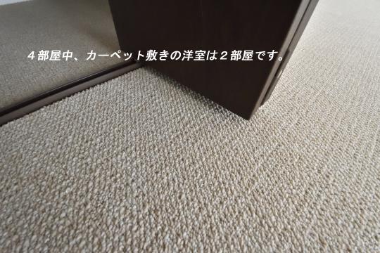 真栄マンション東刈谷601号室のカーペット。