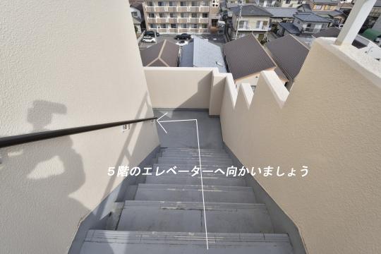 真栄マンション東刈谷の階段を下ります。