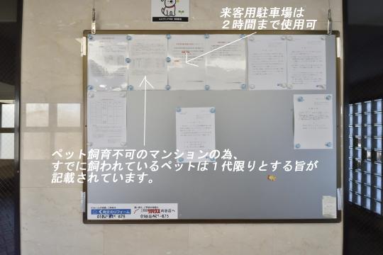 エルグランデ刈谷イーストウイングの掲示板にはペット飼育と来客用駐車場の注意書きが貼られています。