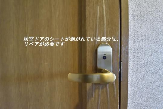 エルグランデ刈谷イーストウイングの居室ドアです。