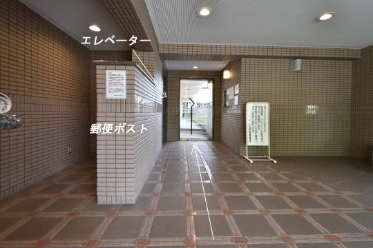 DSC_0015_00011