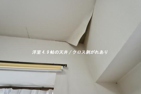 DSC_0034_00027