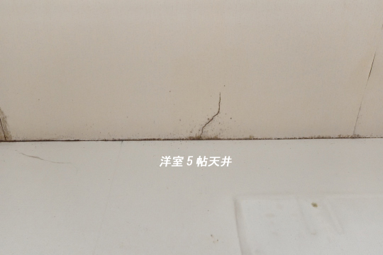 DSC_0040_00033