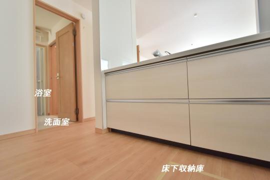 東浦町石浜青木の新築キッチン。