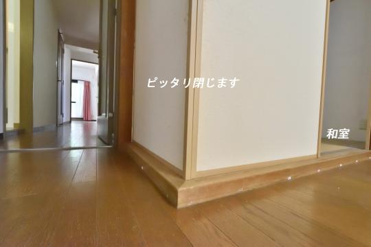 DSC_0089_00073