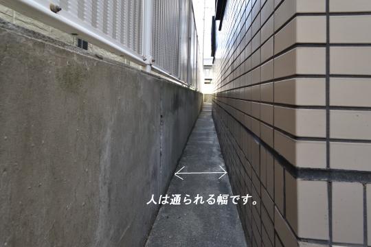 DSC_0121_00105
