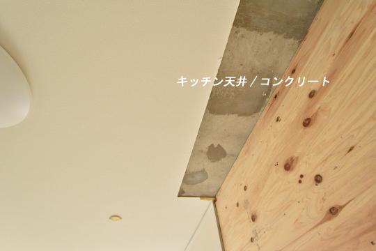 DSC_0046_00040