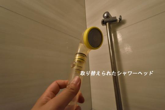 DSC_0060_00057