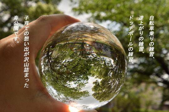 刈谷市寿公園