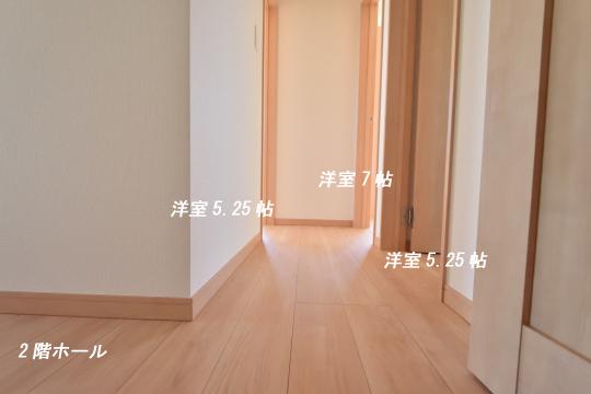 DSC_0102_00098