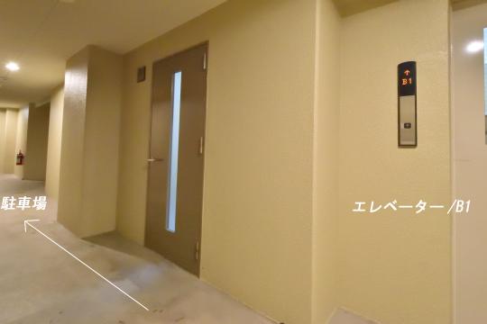 DSC_0220_00213
