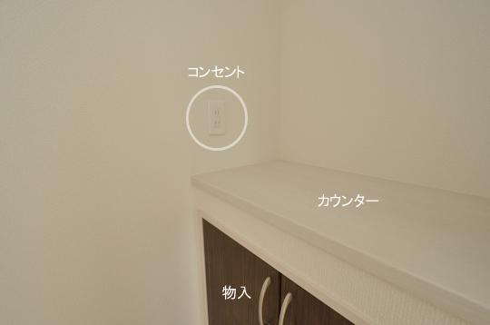 _DSC0310_00096のコピー