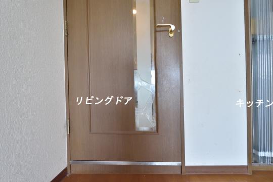 DSC_0153_00145_00145