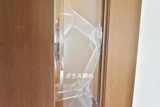 DSC_0154_00146_00146
