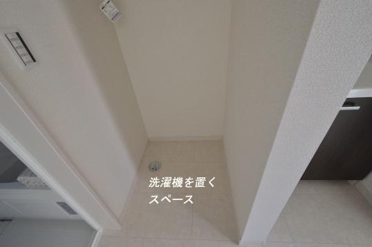 _DSC0053_00027のコピー