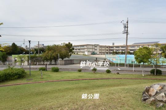 錦公園から見下ろした錦町小学校