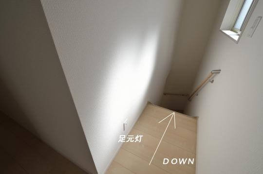 _DSC0119_00060のコピー