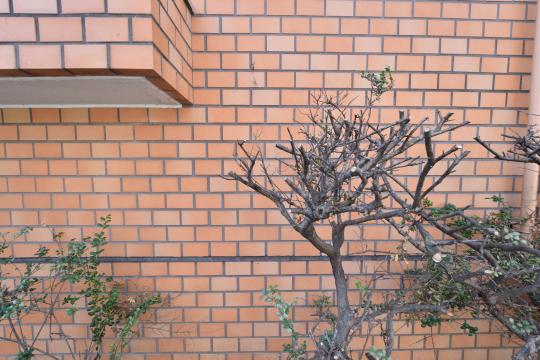 エスぺランタ安城の外壁タイルは茶色