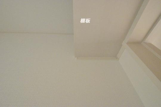 _DSC0080_00031のコピー
