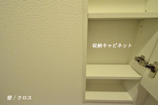 _DSC0077_00036のコピー