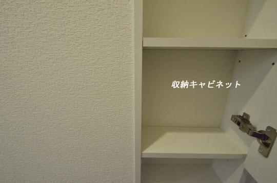 _DSC0118_00056のコピー