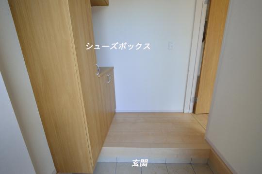 _DSC0015_00005のコピー