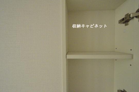 _DSC0078_00030のコピー