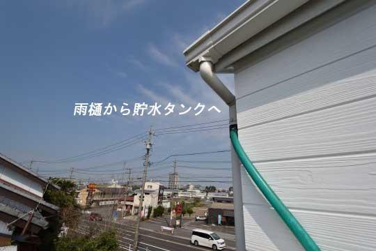 DSC_0061_00056