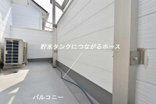 DSC_0062_00057