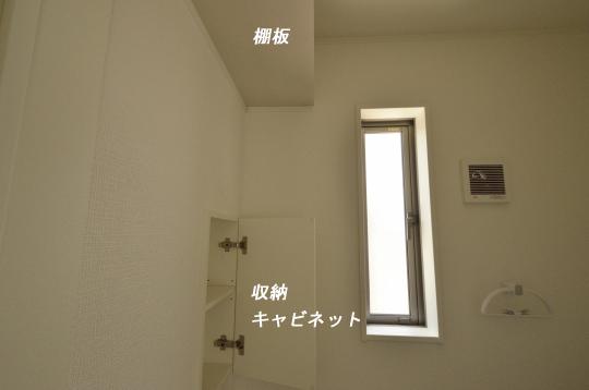 _DSC0083_00042のコピー