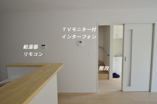 _DSC0017_00009のコピー