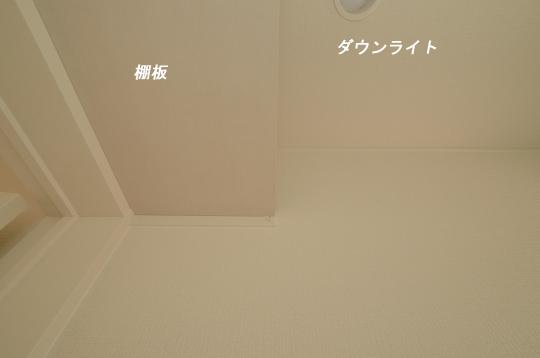 _DSC0120_00059のコピー
