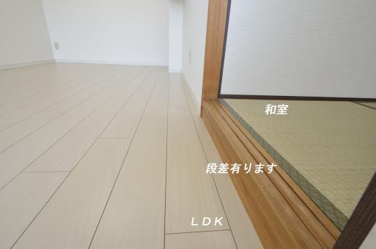 _DSC0073_00037のコピー
