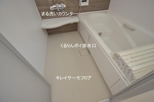 _DSC0568_00008のコピー