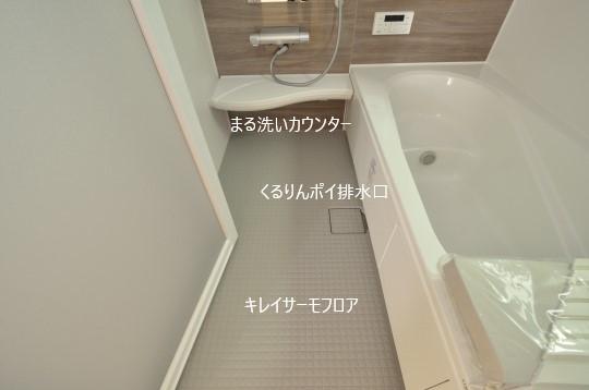 _DSC0145_00104.jpgコピー