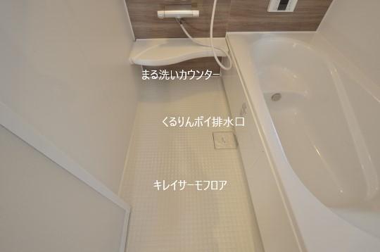 _DSC0080_00076.jpgコピー